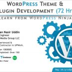 Wordpress Theme development and plugin development course